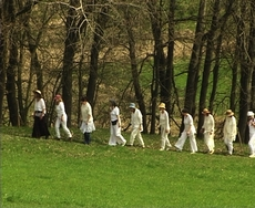 Time of the White Goddess: walking in the spring